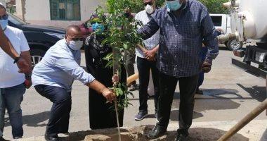 رئيس مدينة سفاجا: نسعى لزيادة المساحة الخضراء بالمدينة