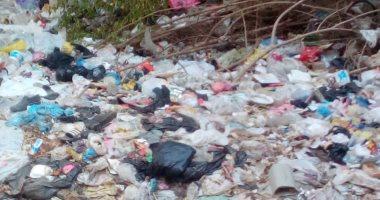 أهالى شارع حسن سلام بمدينة طنطا يشكون تراكم القمامة