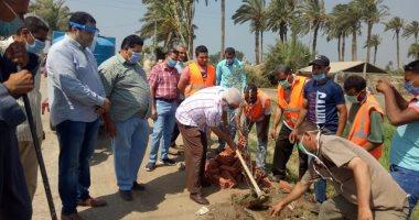 رئيس محلية بني سويف : غرس 1400شجرة ضمن مبادرة بني عفان قرية مثمرة