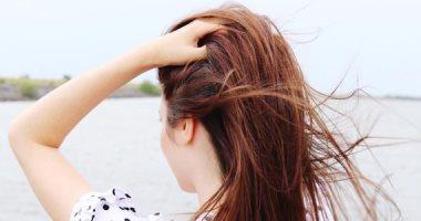 باحثون يكتشفون العلاقة بين تناول أحد الأطعمة وعلاج سقوط الشعر