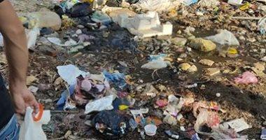 سيبها علينا.. شكوى من انتشار القمامة بمنطقة قراقص بالبحيرة