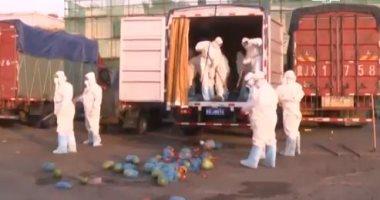 تعقيم الشاحنات الغذائية بأحد أسواق بكين خوفا من كورونا.. فيديو