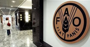 """""""الفاو"""" تطلق مؤتمرا لمناقشة الجوع وكورونا والجراد بأفريقيا بمشاركة 45 دولة"""