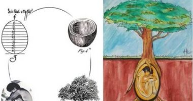 زوجان إيطاليان يبتكران كبسولة تحول جثة الإنسان لشجرة بعد الموت.. فيديو
