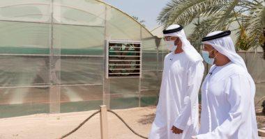 محمد بن زايد: قطاع الزراعة فى تقدم مستمر ومهم لتحقيق أهداف الأمن الغذائى