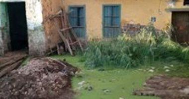 سيبها علينا.. شكوى من انتشار المياه الجوفية فى قرية المويسات بأسوان