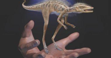 """""""ينفع حيوان أليف"""".. اكتشاف حفرية لديناصور صغير حجمه """"قد الإيد"""""""