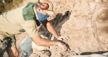 العثور على سمكة متحجرة من عصر الديناصورات.. صور