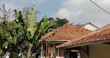 قرود المكاك تحتل منازل قرية أندونيسية  بعد طردها من الغابات .. صور