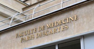 الجارديان: الفئران تأكل جثثا بشرية تبرع بها أصحابها للبحث العلمي في فرنسا