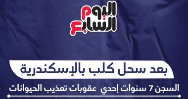 إنفو جراف.. مسجون فى كلب.. السجن 7 سنوات عقوبة واقعة السحل فى الإسكندرية