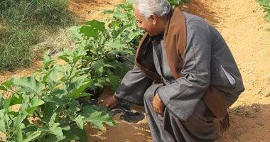 نقيب الفلاحين يحذر من عواقب جرائم الاعتداء على الأرض الزراعية