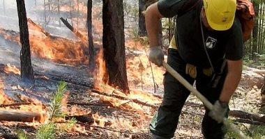 حرائق الغابات تتسبب فى إطلاق 700 طن من الكربون بالدقيقة الواحدة