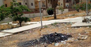 شكوى من تراكم وحرق القمامة فى الحى الـ 11 بالشيخ زايد
