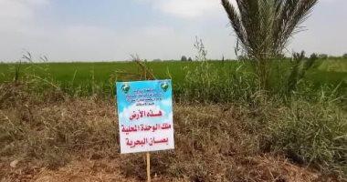 إزالة 13 حالة تعد على الأراضى الزراعية بالشرقية.. صور