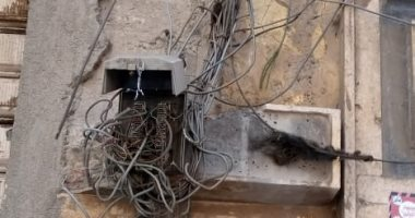 قارئ يشكو تهالك التوصيلات وبوكس التليفون الأرضى بالإسكندرية