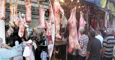 التموين: نعمل على تثبيت أسعار اللحوم فى الشوادر
