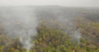حريق يقضى على 25 ألف هكتار فى الأمازون البوليفى.. صور