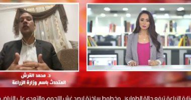 """متحدث وزارة الزراعة لـ """"تلفزيون اليوم السابع"""": أسعارنا تقل 20% عن السوق"""