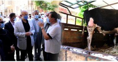 محافظ بني سويف : تسلم 30  أضحية حية لتوزيع لحومها على الأسر الأولى بالرعاية
