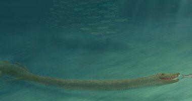 علماء يكشفون لغز مخلوق زاحف عاش قبل 242 مليون عام عنقه أطول من جسمه