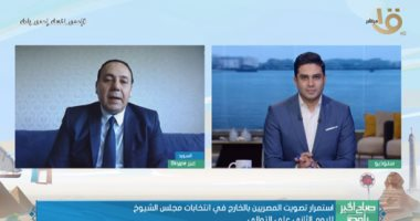 الجاليات المصرية بأوروبا: اجتماعات عبر الفيديو كونفرانس لمتابعة التصويت بالشيوخ