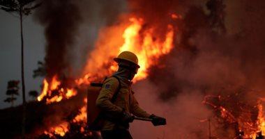 فرق الإطفاء البرازيلية تحاول السيطرة على حرائق غابات الأمازون