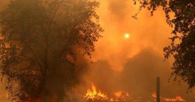 كاليفورنيا تواجه 560 حريقا.. وحاكم الولاية: نتعرض لأسوأ موسم حرائق