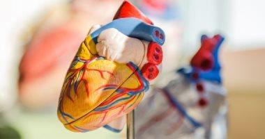 أعراض عدم انتظام ضربات القلب.. أبرزها ضيق التنفس