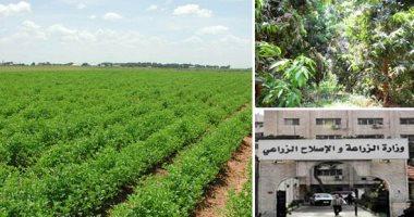 الزراعة تكشف تفاصيل التعاون بين مصر والسودان