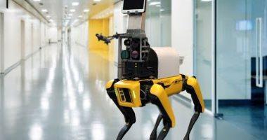 10 دول استخدمت الروبوتات بدلا من العمال.. كوريا الجنوبية تتصدر