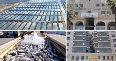 """مصر تحقق أعلى إنتاجية سمك بـ1.9 مليون طن.. """"الزراعة"""" توجه بالتوسع فى الاستزراع المكثف والتكاملى والأقفاص والقشريات.. وإزالة التعديات والاهتمام بالمصايد الطبيعية وإنشاء عدد من المفرخات البحرية"""