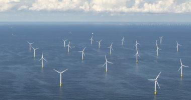 البرازيل تستعد لإطلاق مشروع طاقة الرياح البحرية لتوفير 25% من الطاقة