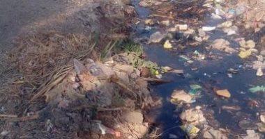 القمامة تنتشر فى قرية ديرمواس بالمنيا والأهالى يطالبون برفعها