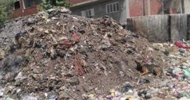 تراكم القمامة بقرية سلامون بالمنوفية.. والأهالى يستغيثون