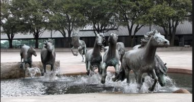 """100 منحوتة عالمية.. """"الخيول"""" كانت تتنفس حرية"""