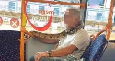شاهد.. رجل يستخدم ثعبانا بديلا لقناع الوجه بحافلة ببريطانيا.. اعرف الحكاية