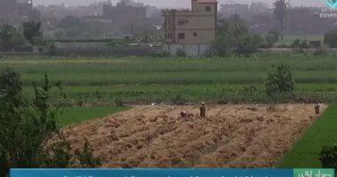"""""""صباح الخير يا مصر"""" يعرض خريطة زراعية جديدة لمصر في عهد الرئيس السيسي..فيديو"""