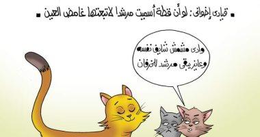 """""""لو أن قطة سُميت مرشدا لاتبعها غامض العين"""" فى كاريكاتير اليوم السابع"""