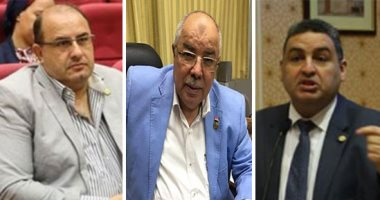 إشادة بوعى المصريين ضد أكاذيب الإخوان