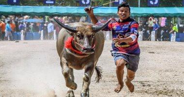 سباق جاموس تايلاند يتحدى قيود كورونا صور