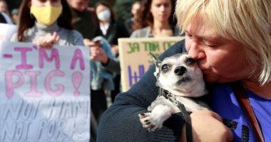 صور.. الأوكرانييون يتضامنون من أجل حقوق الحيوان فى مسيرة بالعاصمة