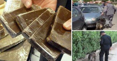 الداخلية تضبط تاجر مخدرات غسل 41 مليون جنيه بالعقارات