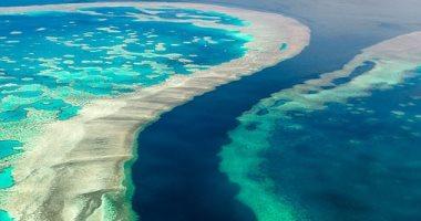 """أستراليا تسعى لتجنب تصنيف الحاجز المرجاني العظيم بـ """"المهدّد بالخطر"""""""