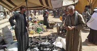 انتشار بيع أدوات الفلاحة بالأسواق الشعبية بقنا مع قرب موسم حصاد القصب الشتوى