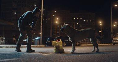 """علي الكشوطي يكتب: Bullmastiff.. ربما ليس عليك ألا أن تكون """"كلبا"""""""