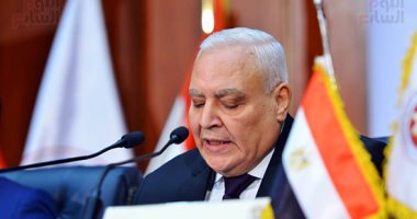المصريون بالخارج يطبعون بطاقات تصويت إعادة المرحلة الثانية يومى الخميس والجمعة