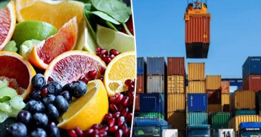 36 مليون دولار صادرات الصناعات الغذائية المصرية إلى الصين فى 2020 بنمو 21%