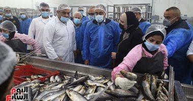 أسعار الأسماك بسوق العبور اليوم.. البلطى الأسوانى يترواح بين 17-37 جنيها للكيلو