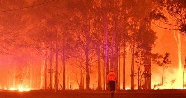ديلى ميل: خطورة حرائق الغابات تزداد بسبب الجفاف فى الولايات المتحدة